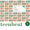 Teen-Beat One Hundred 100 compilation album